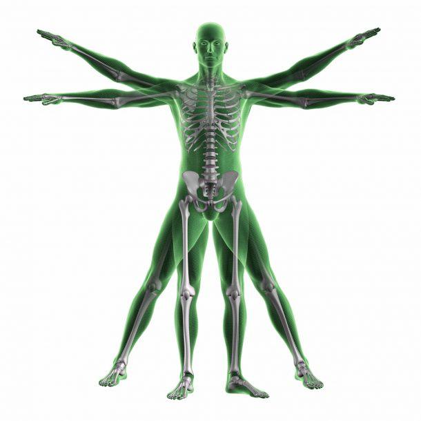 fisioterapia_roma